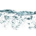 Preparación y catas de agua, cafés e infusiones
