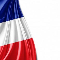 Francés B1