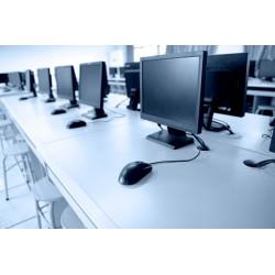 Microsoft Access 2010 básico