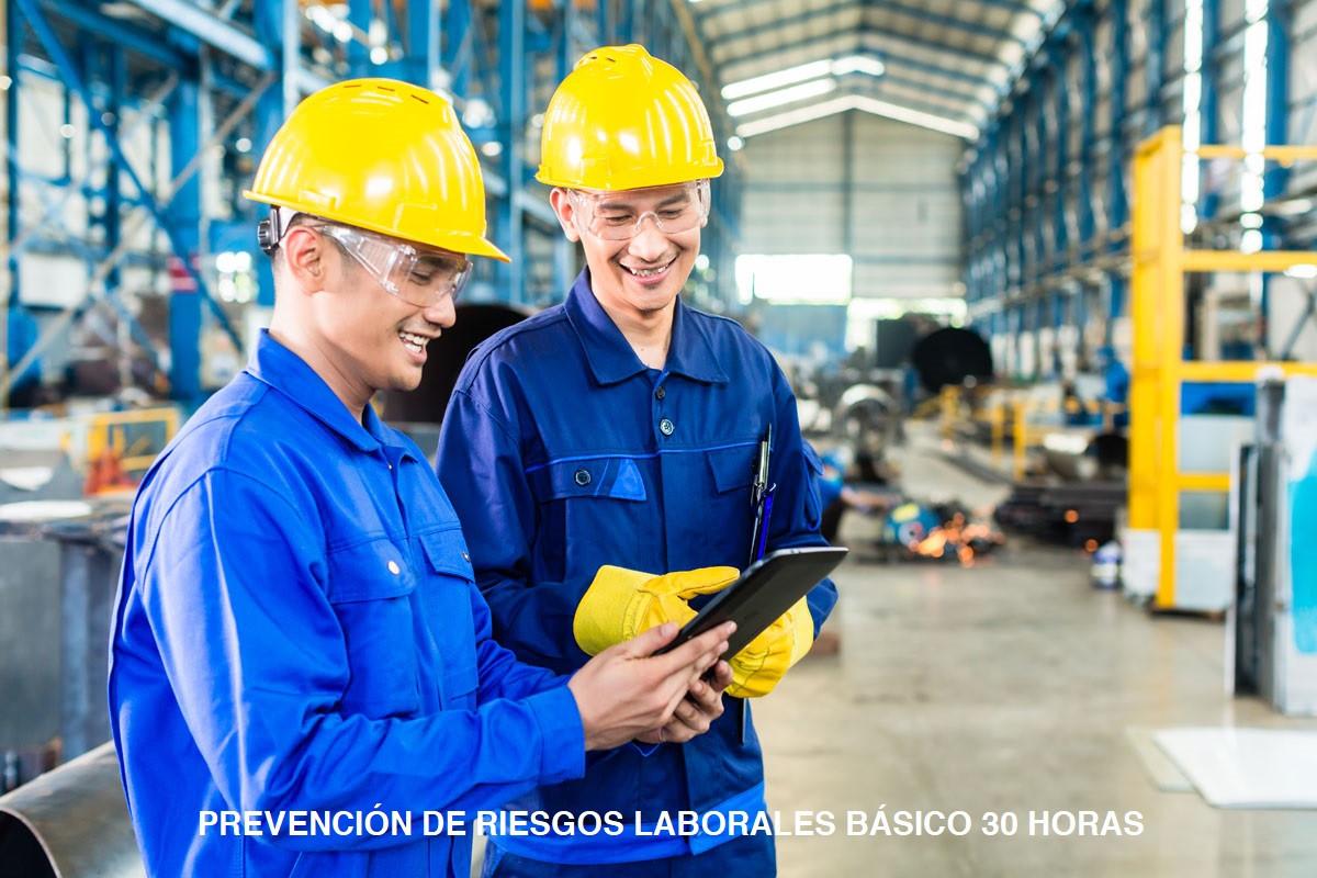 PREVENCIÓN DE RIESGOS LABORALES BÁSICO 30 HORAS